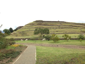 Pumapungo - a huge Incan site preserved in Cuenca.   The museum there is awesome.